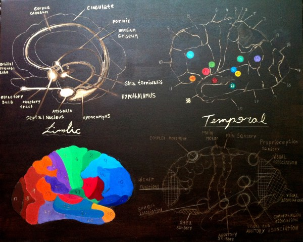 limbic temporal functional 2