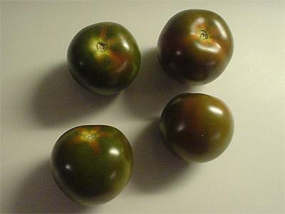 tomaten tomatl paradeiser part 41. Black Bedroom Furniture Sets. Home Design Ideas