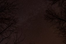haind-woods-stars-redo-8