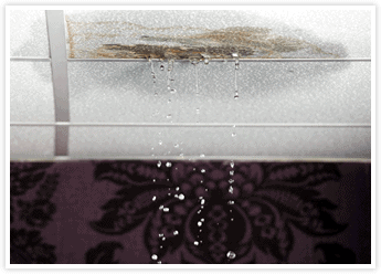 Signs that Your Roof is Leaking with Tom Byer Roofing Service in Orange County