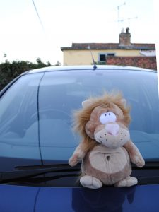 Rory's Car Lion