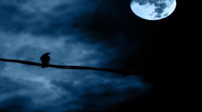 The Blue Skies Lie (A Poem)