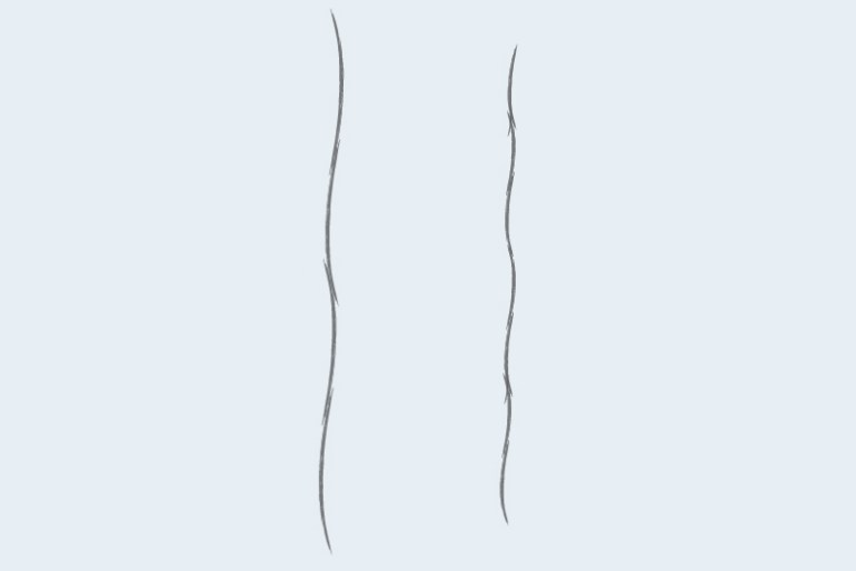 Extra-Long Staple Fiber vs Short Staple