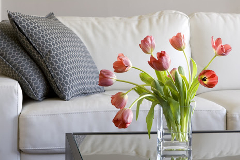 clean leather sofa with damp cloth pallet ideas how to furniture real faux white and colored buff your