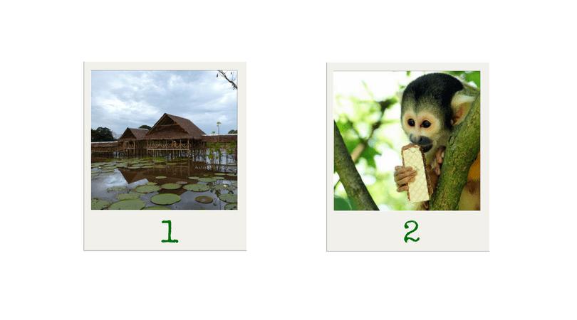 Best destinations Colombia Amazonas