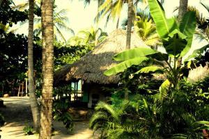 Brisa tranquila hostel Caribbean Coast Colombia
