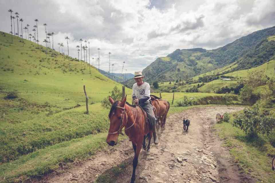 A Local Farmer in the Valle de Cocora - credit: John Crux/ Shutterstock