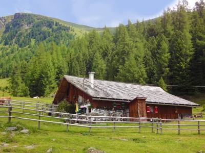 Hütte auf der Turrach
