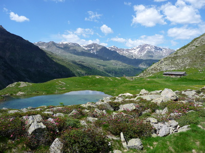 Südtiroler Mountainbikewelt