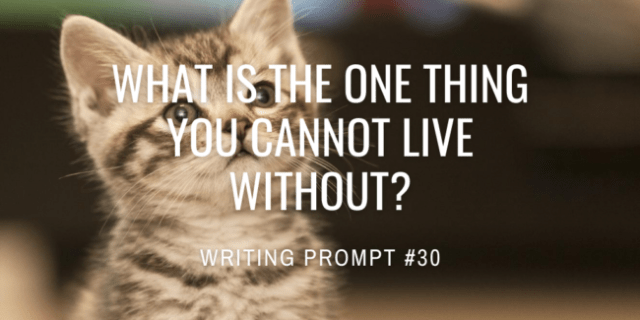 What is the one thing you cannot live without?