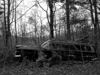 Abandoned Station Wagon_6248145662_l