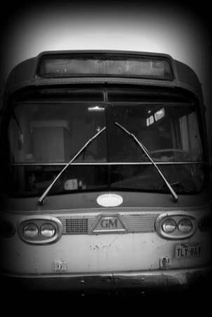 Bus-Graveyard-5
