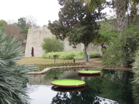San Antonio Botanical Garden 14