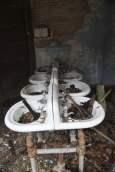 old_lodge_sink-line-up_5633904952_o_40