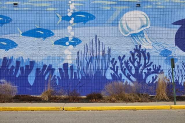 The Age Of Aquarius