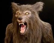 life sized werewolf statue aka