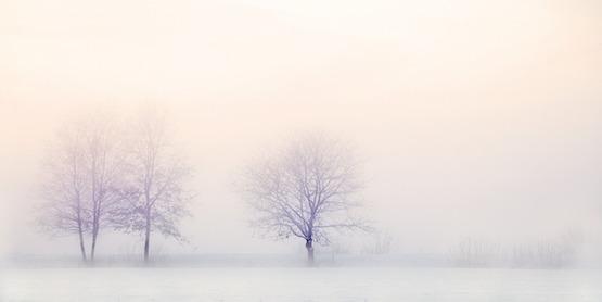雪だるまのない景色