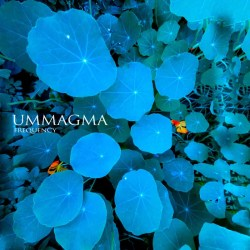Ummagma Frequency cover