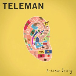 teleman brilliant sanity