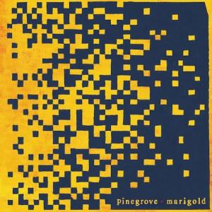 Pinegrove - Marigold   Tomtomrock