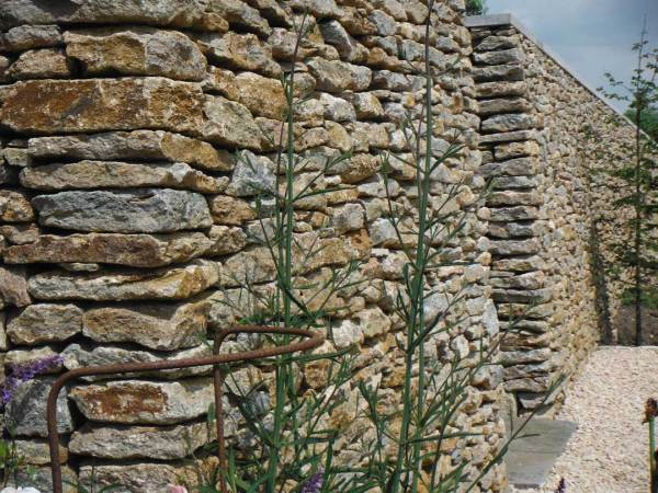 dry stone walling natural