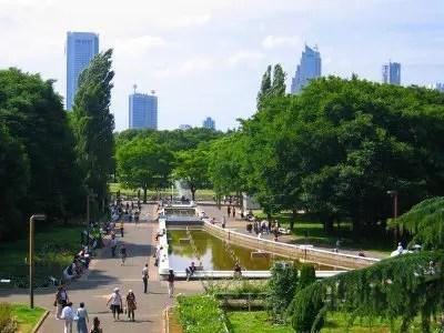 欧米人-日本旅行-代々木公園