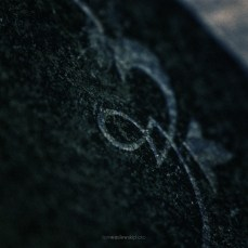 cosel_cemetery_1_09