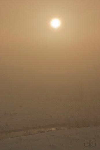 sun_eclipse_1_11