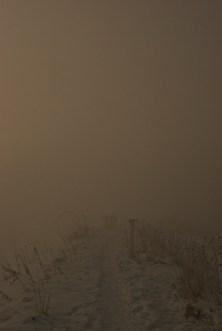 sun_eclipse_1_12