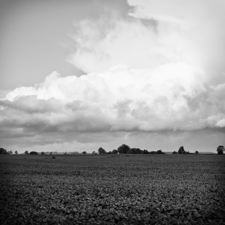 wuthering_11
