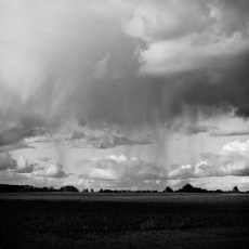 wuthering_14