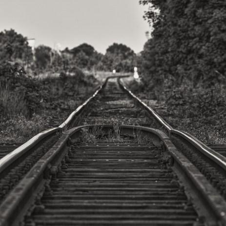 schwarz-weiß-welt_12