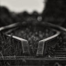 schwarz-weiß-welt_14