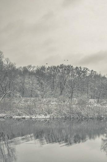 winter_fell_16