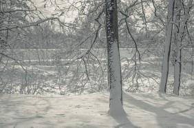 winter_fell_22