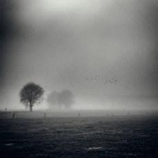 fog_eersel_2_04