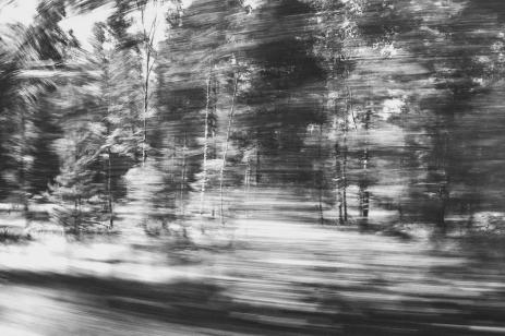 speed_1