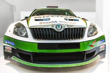 WRC žába
