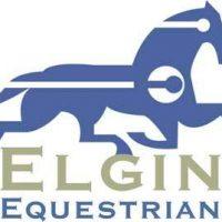 Elgin Equestrian materiel et couvertures pour chevaux