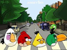 abbey_birds_by_dandav87-d3j697d