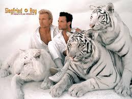 Sigfried e Roy con la Celebre Tigre