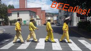 Abbey Road parody Apicoltori