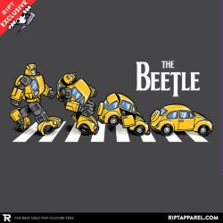 Abbey road Bumblebee (11092019)