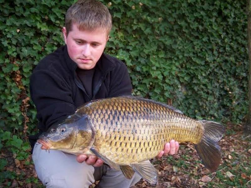 Motten (55)