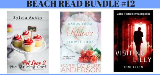 Summer Beach Read Giveaway -bundle-12