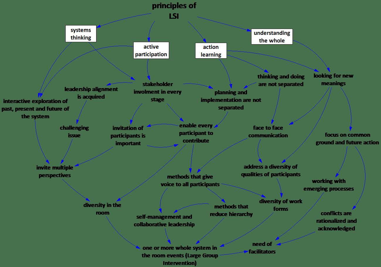 hight resolution of group model building causal loop diagrams