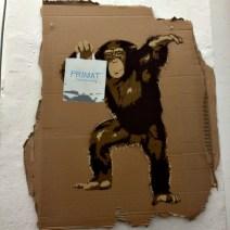 Marshal Arts - Primat