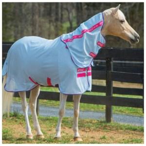 Amigo Bug Rug Pony