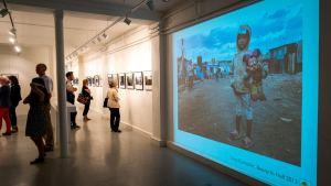 PX3, Curators Challenge Prize, 2014, Tony Corocher
