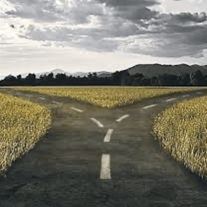African Entrepreneurship Digest (December Edition): Crossroads